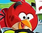 العاب الطيور الغاضبة سباق